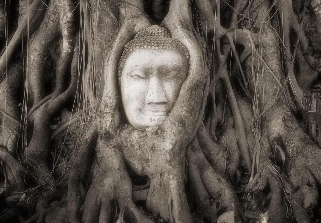 Buddha, Heilung, Lösung Problem